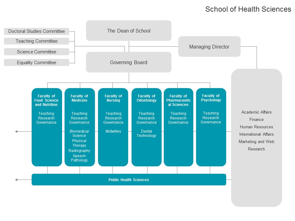 The structure of the School of Health Sciences