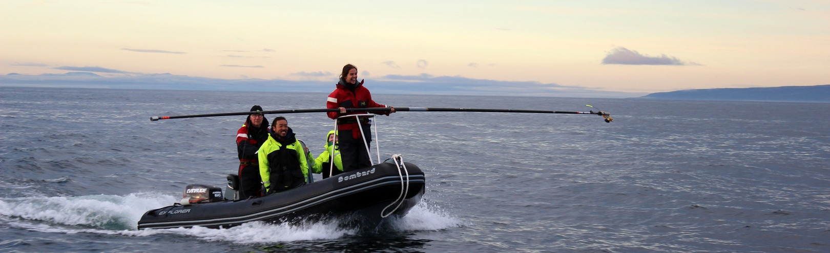 Testing a marine vibrator that could reduce the impact of oil exploration on whales - Available at University of Iceland