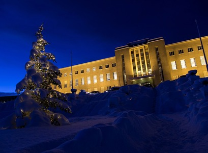 Main Building and a Christmas tree