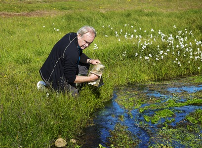 Gísli Már Gíslason, professor emeritus in Limnology, has studied the impact of climate warming and pollution from fertilisers on the biosphere in streams in Hellisheiði with his colleagues for over a decade.