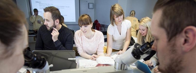 Interdisciplinary studies - Available at University of Iceland